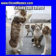 Clean Funny Memes - best 25 ideas about clean memes find what you ll love