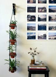 indoor wall garden diy plant hangers indoor wall herb garden diy