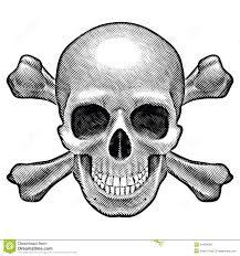 skull and crossbones figure stock vector illustration of black