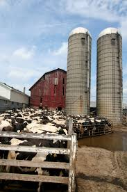 236 best farm silos images on pinterest children farm life and