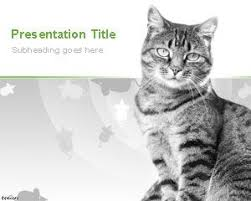 free animals powerpoint templates page 2 of 12
