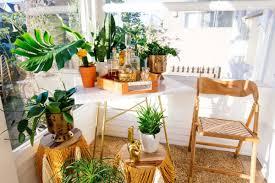 bette planter design by justina blakeney u2013 burke decor