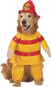Small Dog Halloween Costumes Pet Fireman Dog Halloween Costume Small Dogs Pet Friendzy Http