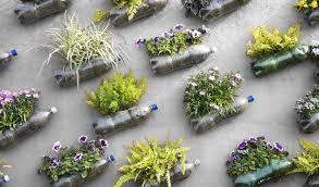 urban garden ideas garden design ideas
