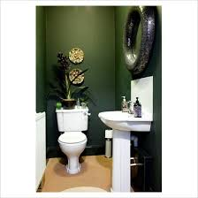 Green And White Bathroom Ideas Dark Green Bathroom But Needs A Lot Of Light White Fixtures Make
