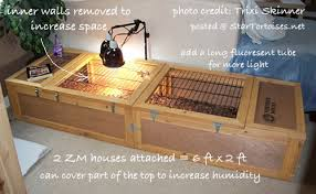 how to build a tortoise table indoor housing for tortoises