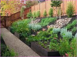 Sloped Garden Design Ideas How To Landscape A Sloping Garden Design Decoration