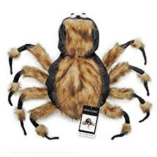 afghan hound creepy 7 spider dog costumes to turn your dog into a cute creepy crawly