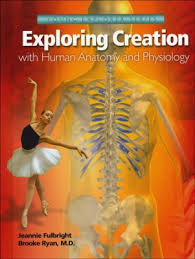 Images Of Human Anatomy And Physiology Apologia Exploring Creation With Human Anatomy And Physiology