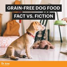paleo dog does grain free dog food create a healthier pet dr axe