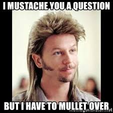 Mustache Meme - i mustache you a question but i have to mullet over joe dirt