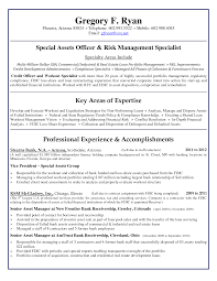 Sample Financial Reporting Manager Resume Security Manager Cv Examples Of Resumes Job Resume Example Jr