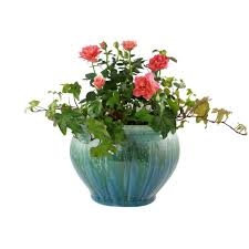 pennington 8 5 in ceramic atlantis belfry planter 100012730 the