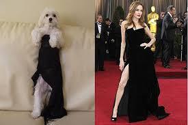 Angelina Leg Meme - angelina jolie s leg is now an internet meme of course
