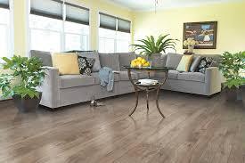 d best floorz more home tradie