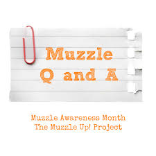 industry professionals render their very top advice on best way to stop biting nails muzzle stigma the muzzle up project