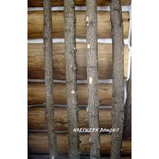 chuppah poles white birch poles chuppah or wedding poles 8 northernboughs on