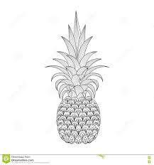 tropical fruit coloring pages 135 best dessins fruits images on