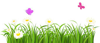 grass and butterflies png clipart gallery yopriceville high