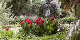 Geelong Botanic Gardens by The Gardens Rippon Lea Estate