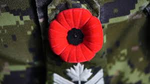 army news in central canada canadian army video poppy pinning