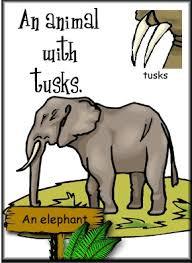 english language year 3 animal body parts