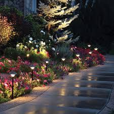 Led Landscaping Lighting Empress Led Landscape Light Dekor Lighting