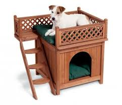 Doggie Bunk Beds Bed Bunk Beds