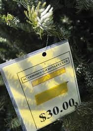 rotary settles in for its christmas tree sale portland press herald