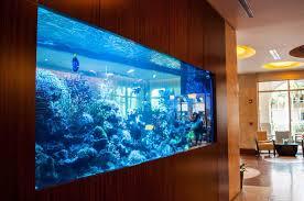 Aquarium Room Divider Living Room Leather Sofa Sale Car Wheel Coffee Table Aquarium As