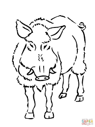 boar coloring page free printable coloring pages