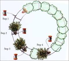 how to make a wreath decorations how to make a wreath the colonial williamsburg