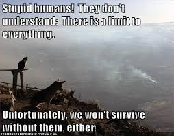 Memes Are Stupid - stupid humans they don t understand there is a limit to everything