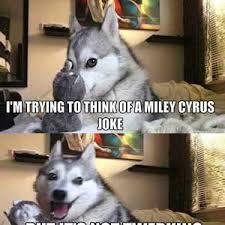 Dog Meme Generator - pun dog meme husky