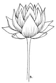 Simple Lotus Flower Drawing - 450 best coloring images on pinterest coloring books drawings
