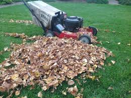 punch list fall tips for preparing your garden trees and lawn