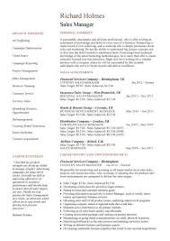 sales manager resume template two page resume templates sales manager cv exle free cv