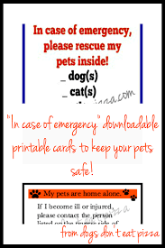 in case of emergency pet printables thediybungalow com