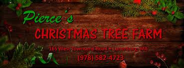 christmas tree farm lunenburg ma christmas tree farm worcester ma