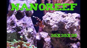 Marine Aquascaping Techniques Nanoreef Aquascape Natural Aqua Technique Youtube