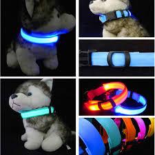 collar light for small dogs shop dog collars leashes online nylon led dog collar light night