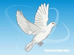 flying dove black u0026 white sketch vector download