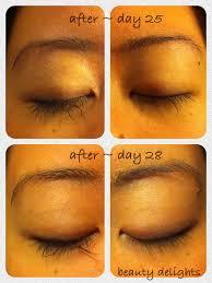 beauty delights review mink eyelash extensions week 4 u0026 5