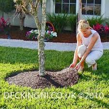 eco landscaping
