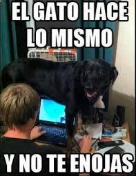 Funny Spanish Meme - memes en español spanish memes chistes more memes pinterest