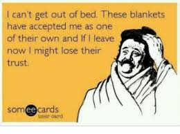 Get Out Of Bed Meme - can t get out of bed these blankets have accepted me as one of their