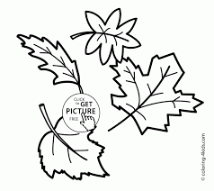 download coloring pages holly leaves coloring pages holly leaves
