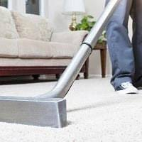 Professional Area Rug Cleaning Power Pup Clean Seattle Carpet Cleaning
