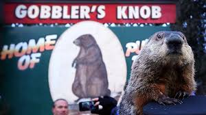 Bill Murray Groundhog Day Meme - for groundhog day hear public radio s records on repeat world