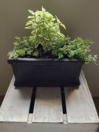 free garden plants potager garden design kitchen garden ideas